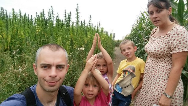 kurozweki_labirynt_kukurydzy